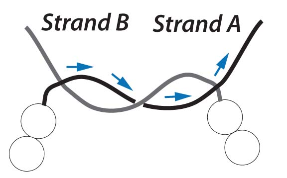 step 3 knot elastic