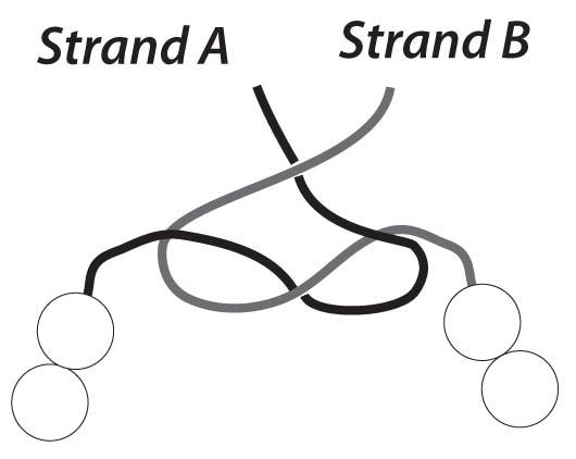 step 4 knot elastic